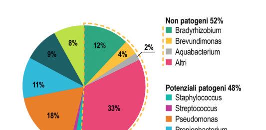 caratterizzazione della popolazione batterica